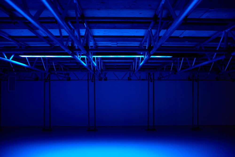 Installation: Gallery is empty but lit with blue.