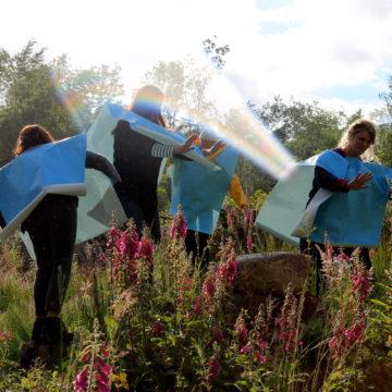 Four people stand in a field growing with fox gloves. They each have a large piece of blue paper draped over them, a hole cut in it for their head to go in.