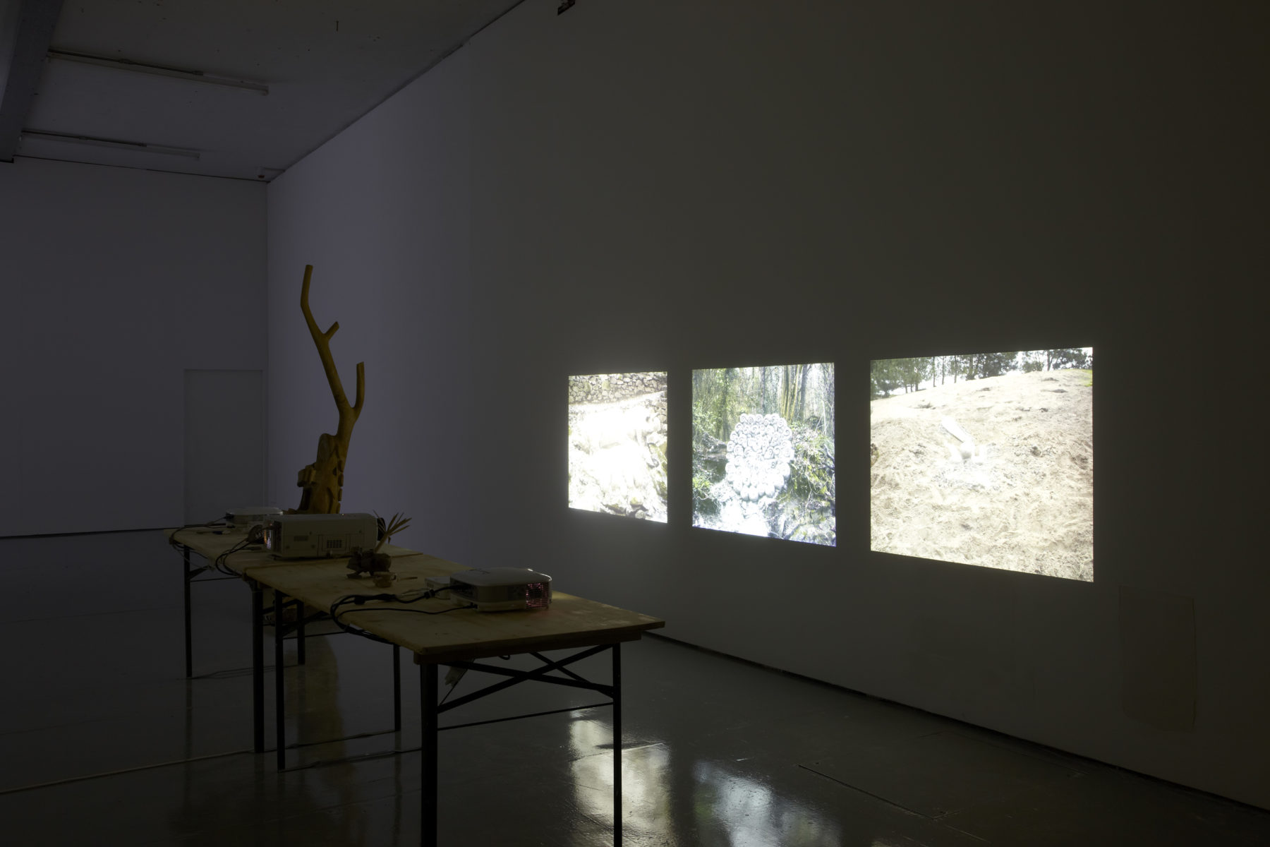 Installation view of Crêpe Suzette, (2012). An abstract wooden carving sits next to three projections of a woodland scene.