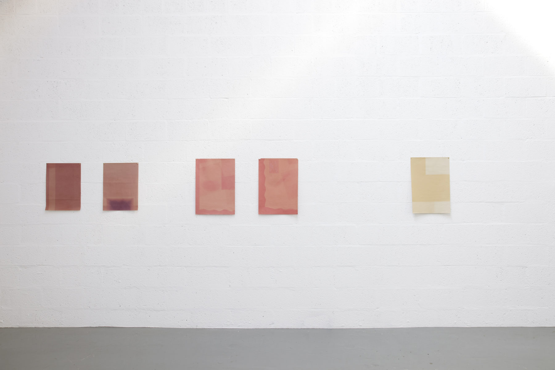 Installation view of Sara MacKillop, Faded Paper (2011). Five sheets of sugar paper, faded by the sun, are pinned to the white gallery wall.