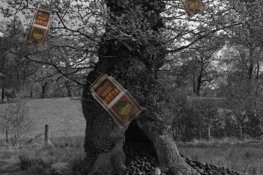 Manipulated photograph: A black and white tree has clumps of coal gathered around its roots and images of vintage slot machines growing from its branches.