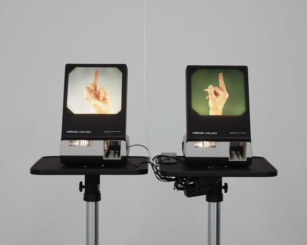 Two different screens in the gallery show two different slides. On the left, is a photograph taken of an extended middle finger, on the right is the same but taken from a different angle.