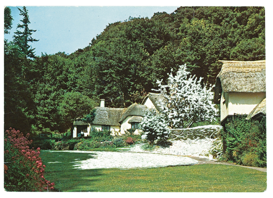 A work from The Artists' Postcard Show (2012). A snow covered tree is collaged into a sunny photograph of cottages.