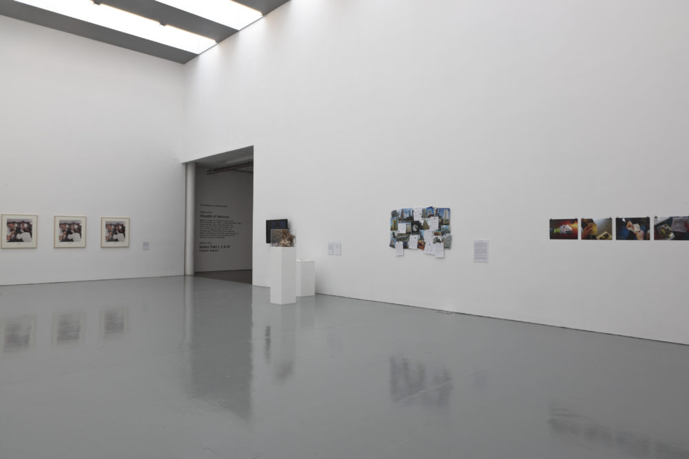 Installation view of Wealth of Nations (2010). The gallery is light and the walls are white. Pictures hang on the walls and a plinth has a sculpture made from twigs atop it.