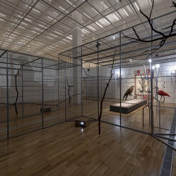 Young In Hong, To Paint the Portrait of a Bird (2019) Metal cage, video projection, wood, sound