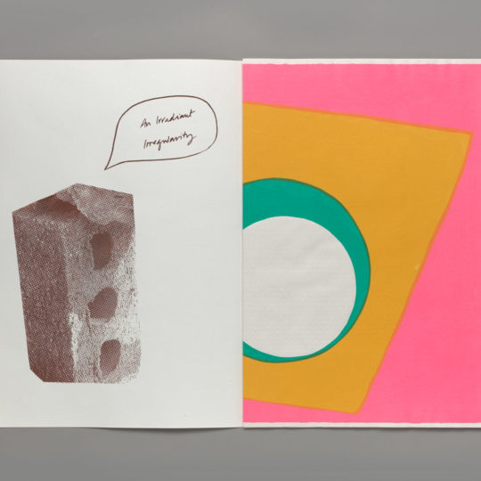 "An open book. On the left page is a risographed and pixelated image of a brick with a hand-drawn speech bubble coming out of it with the words ""An Irradient Irregularity"" written inside it, in cursive. On the right hand page is a colourful abstract print; a white circle on top of a teal circle, on top of a cropped yellow square on a pink background."