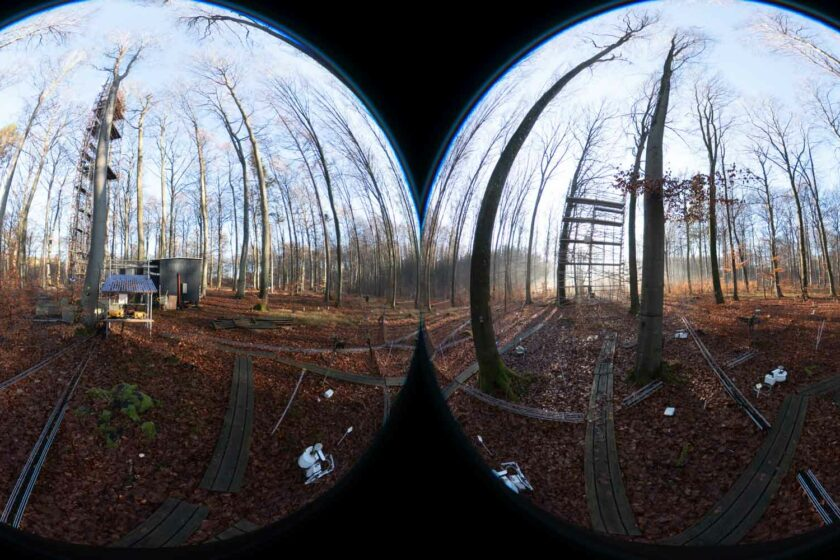 Two fisheye lenses viewing a forest scene in which ladder structures appear to be being built against trees