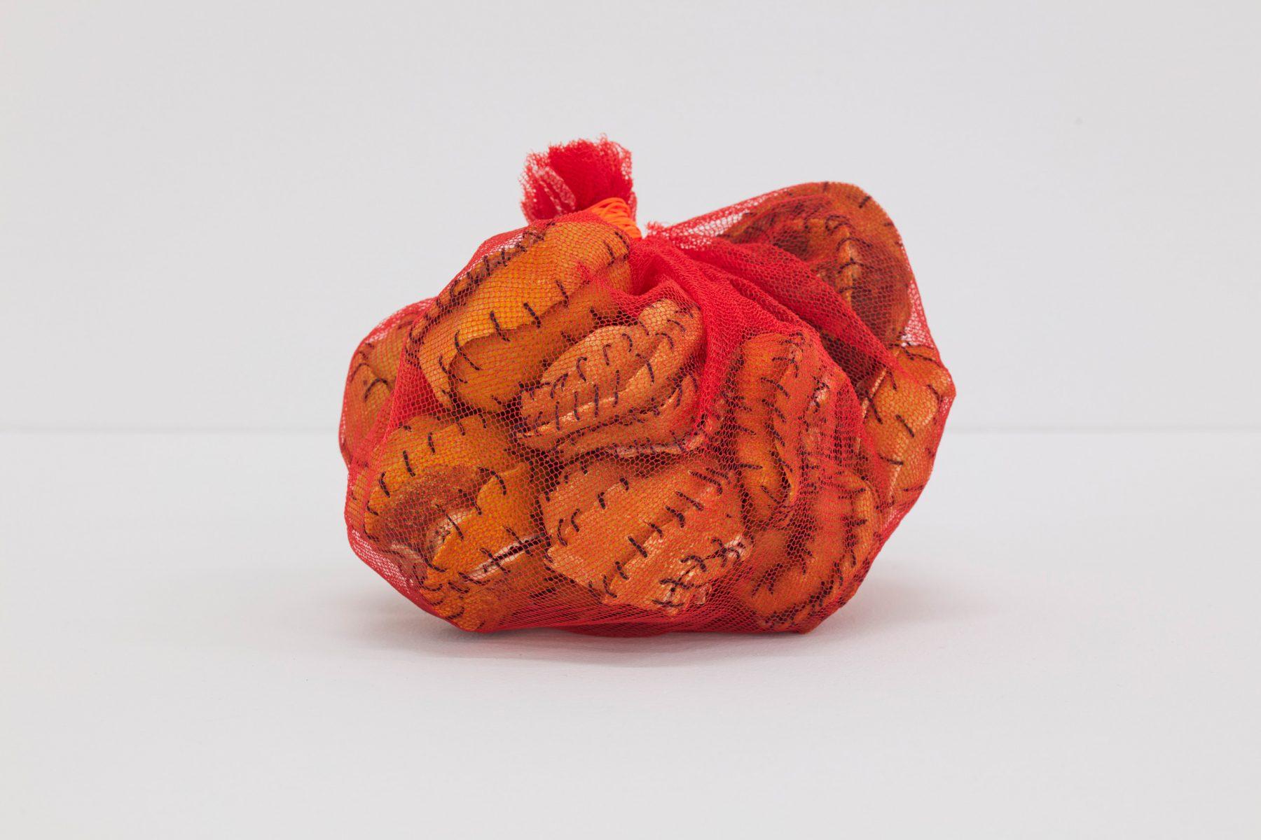 Veronica Ryan, Pouch (2020). Net, orange peels, thread.