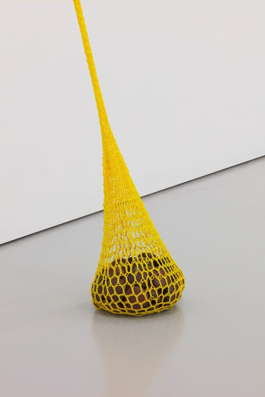 Veronica Ryan, Drift Seeds (2020). Fishing line, drift seeds.