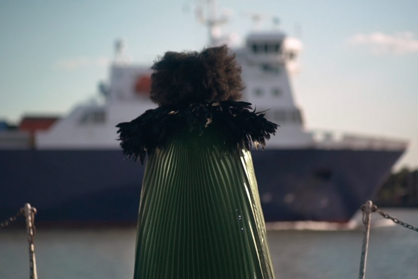 Photograph of the back of a person with afro hair, wearing a shiny green cape with feathered collar, looking out across the water to a large white and dark blue bottomed ship passing by.