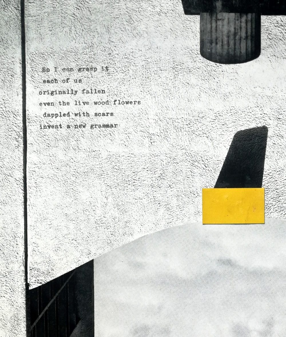 Carol Laidler. a collage artwork which combines monochrome shapes cut out and placed over a grainy light grey background. There are typewriter-style printed words which read: So I can grasp it each of us originally fallen even the live wood flowers dappled with scars invent a news grammar.
