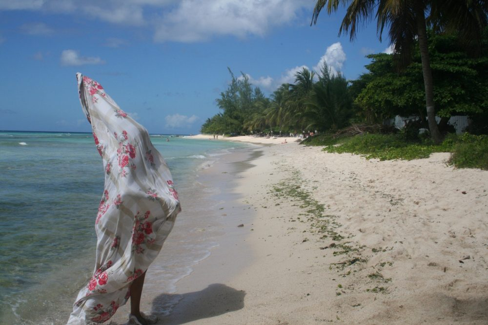 Lauren Craig. : a figure, cloaked in a white silk scarf covered with pink flowers and grey stripes walks along a sandy beach by the water. In the background is lush green foliage and a bright blue sky.